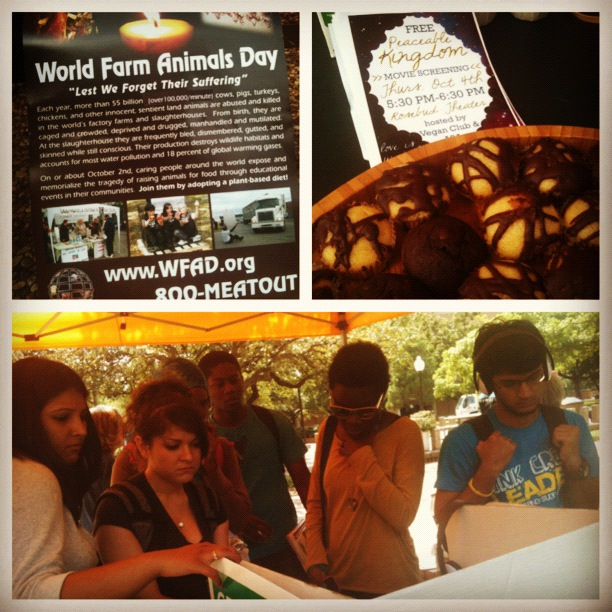 UT Arlington students sampled vegan goodies and watched a four minute video about factory farming at the World Farm Animals Day event.