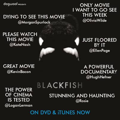 Blackfish' Documentary   My Personal Thoughts + UTA Students Weigh ...