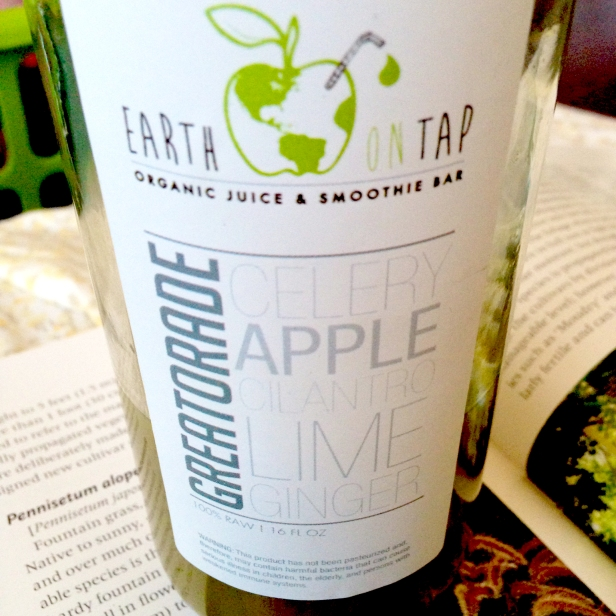 """""""Greatorade"""" from Earth On Tap, an organic juice and smoothie bar. After all the decadent foods, I decided I needed some kind of detox, so I got a bottle of this juice, featuring apples, celery, ginger, lime and cilantro. The sweet and spicy green drink woke my senses up and got my head ready to study after the fair."""