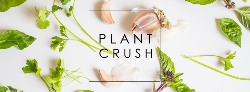 cropped-plant-crush-banner.jpg
