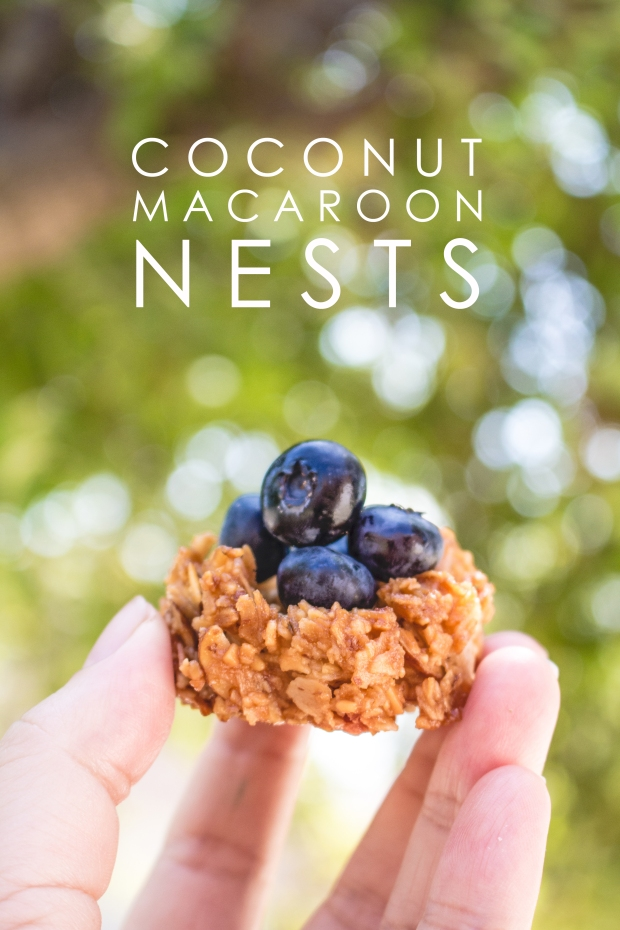 Mini Coconut Macaroon Nests | plantcrush.co