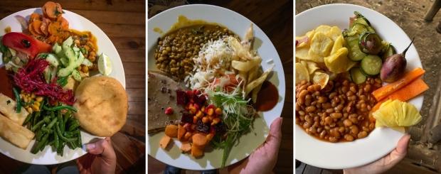 Safari Meals.jpg